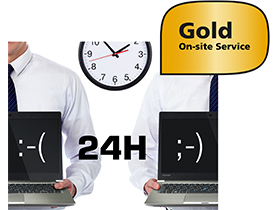 3 years Gold On-site Service including Warranty Extension - Europe